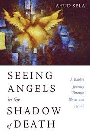 <b>Seeing Angels</b> in the Shadow of Death: A Rabbi's Journey Through ...