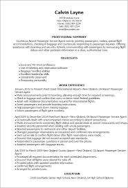 Professional Airport Passenger Service Agent Templates to Showcase     Resume Templates  Airport Passenger Service Agent