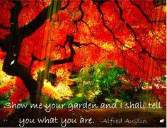Lovely Landscaping Reads on Pinterest | Garden Quotes, Gardening ...