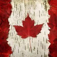 "Из Канады ""Canada <b>Goose</b>"" и др.<b>пуховики</b>. | ВКонтакте"