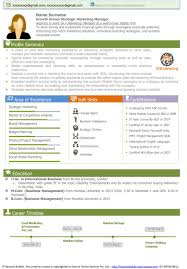 Strategic Planning Manager Resume Sample   Resume Writing Service happytom co