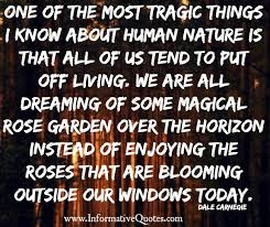 Image result for stop and smell the roses quotes