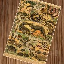 Buy snake <b>wallpaper</b> and get free shipping on AliExpress