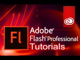 Image result for adobe flash professional