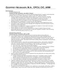 product manager resume examples cipanewsletter product manager resume resume format pdf