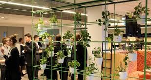 plants at aurecons 5 star green star perth office aurecon sydney offices