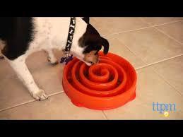 Slo-<b>Bowl Slow Feeder</b> from Kyjen - YouTube