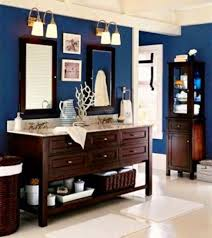 bathroom theme ideas pinterest