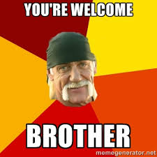 You're Welcome Brother - Hulk Hogan | Meme Generator via Relatably.com