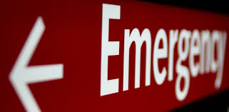 Image result for veterinary emergency