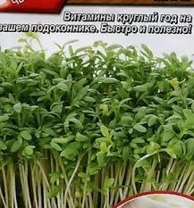 <b>Микрозелень Кресс</b>-<b>салат микс</b> (<b>семена</b>) в интернет-магазине и ...