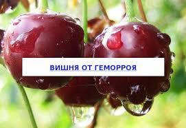 Польза и применение <b>вишни</b> от геморроя - Официальный сайт ...