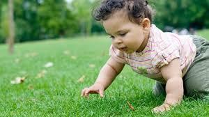 Crawling: When Do Babies Crawl?