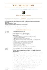 Customer Service Assistant Resume Samples VisualCV