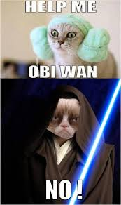 Help me Obi Wan - No - Grumpy Cat - Memes Comix Funny Pix via Relatably.com