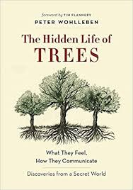 The Hidden Life of Trees: What They Feel, How They ... - Amazon.com
