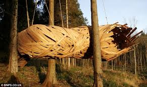 Design students build impressive cocoon like tree house out of    Ecofriendly  The cocoon treehouse weaves between trees is an eco friendly design made from
