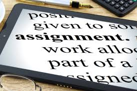 assignment assignment