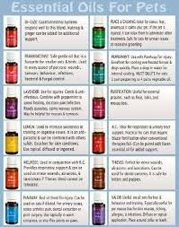 Image result for young living animal oils