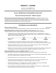 marketing executive resume pdf marketing s executive resume marketing executive resume pdf