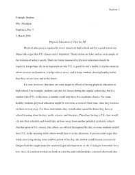 ideas about Essay Writing Tips on Pinterest   Writing Tips  Good Essay and Sat Essay Tips