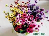الزهور الصناعية اختراع مصري Images?q=tbn:ANd9GcRjR0zzzz2iTORKiLe4gnbxV04icf4H6pMZo5zNfyWMT0MgoIrN3BQW4giM