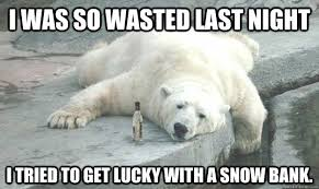 Drunk Polar Bear memes | quickmeme via Relatably.com