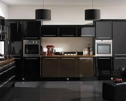 functional kitchen pantry storage elegant elegant glossy black kitchen cabinets