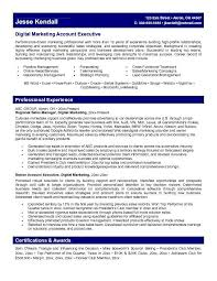 Professional Resume Writers Executive The Truth About Professional Executive Resume Writers Top Pick For Digital Marketing