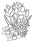 Раскраски букет цветов