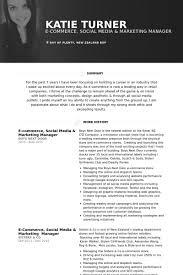 e commerce social media marketing manager resume samples social media marketing resume sample