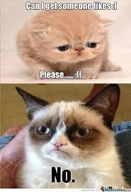 RMX] Sad Kitty by recyclebin - Meme Center via Relatably.com