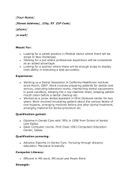 No Job Experience Resume  sample resume with no work experience