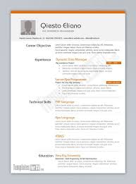 resume examples great 10 ms word resume templates free download free best word resume template