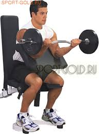 <b>Опция</b> Body Solid Powerline PPCA11X - <b>Парта на бицепс</b>