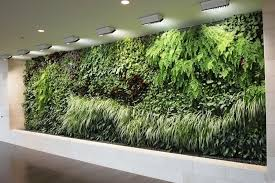 living wall systems indoor