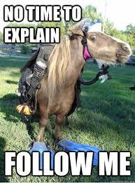 Sea Horse memes | quickmeme via Relatably.com
