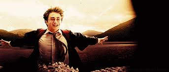 Image result for Yay! harry potter gif