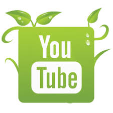 Image result for green youtube