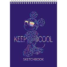 Premium <b>Блокнот SketchBook</b> 60л А5ф 100г/кв.м без линовки ...