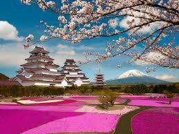 Картинки по запросу пейзажи японии
