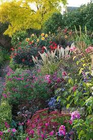 Small Picture Best 25 Perennial gardens ideas on Pinterest Perennials Summer