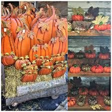day orchid decor: pumpkin decor pumpkin decor pumpkin decor