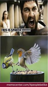 This Is Sparta (Bird Version) by itpeoplebelike - Meme Center via Relatably.com