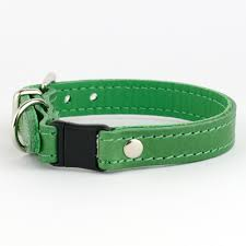 green leather cat collar petiquette collars
