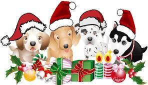 Bildergebnis für smileys weihnachten