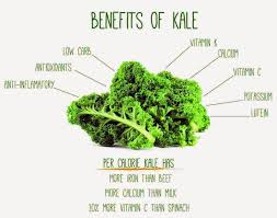 images about health and fitness on pinterest  essay writing health benefits of kale – informationpegcom