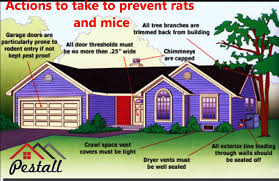rodents pestall various diseases including salmonellosis plague leptospirosis hantavirus and rickettsial pox they contaminate food and food preparation areas