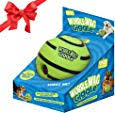 Banfeng Giant Tennis Ball 9.5