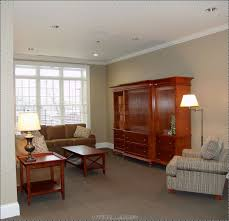 Painting My Living Room Ideas For Colors To Paint My Living Room 4 Best Living Room